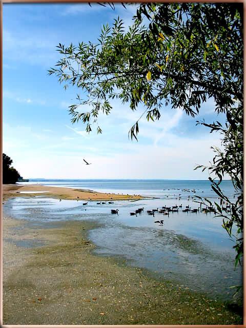 """фото """"Впереди дорога дальняя"""" метки: пейзаж, вода, осень"""