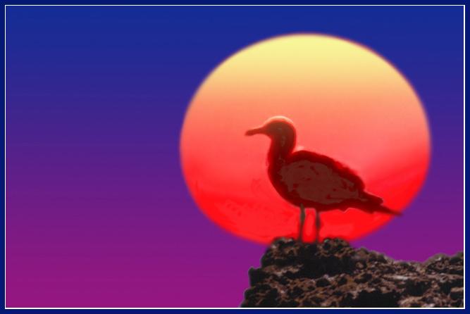 "фото ""Waiting the end of the day"" метки: пейзаж, природа, закат"
