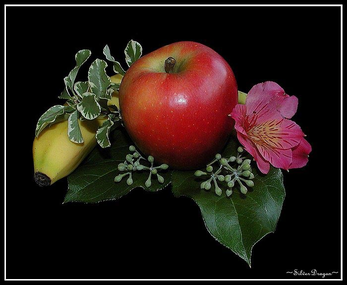 "фото ""At Summer`s End 2"" метки: природа, натюрморт, цветы"