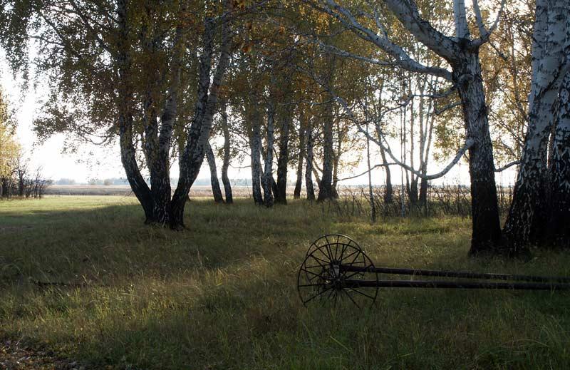 """фото """"На закате дня"""" метки: пейзаж, осень"""