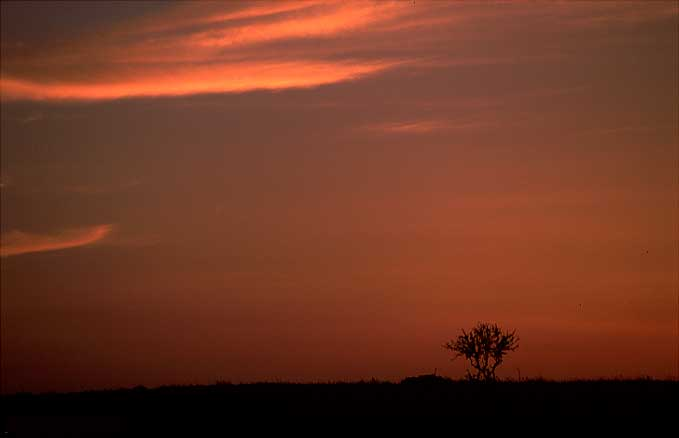 """фото """"As Small As Possible"""" метки: пейзаж, закат"""