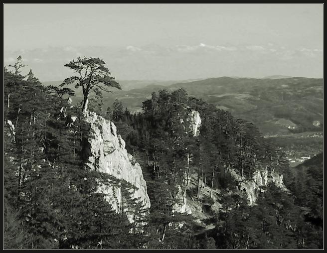 """фото """"*****"""" метки: пейзаж, горы, лес"""