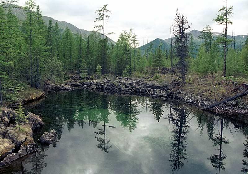 """фото """"====="""" метки: пейзаж, вода, лес"""