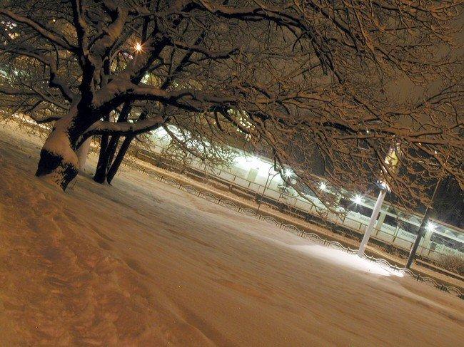 """фото """"А вокруг белым-бело и снегу намело."""" метки: природа, пейзаж, зима"""