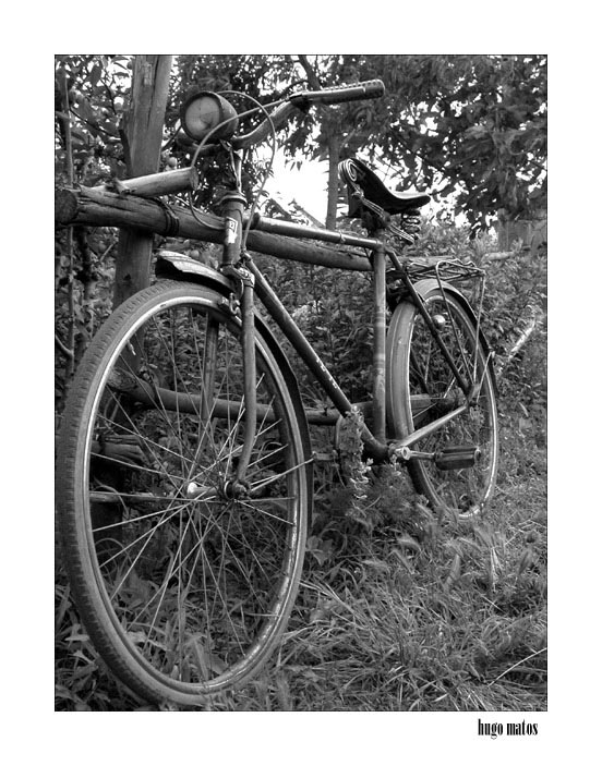 "photo ""Bicicleta"" tags: misc.,"