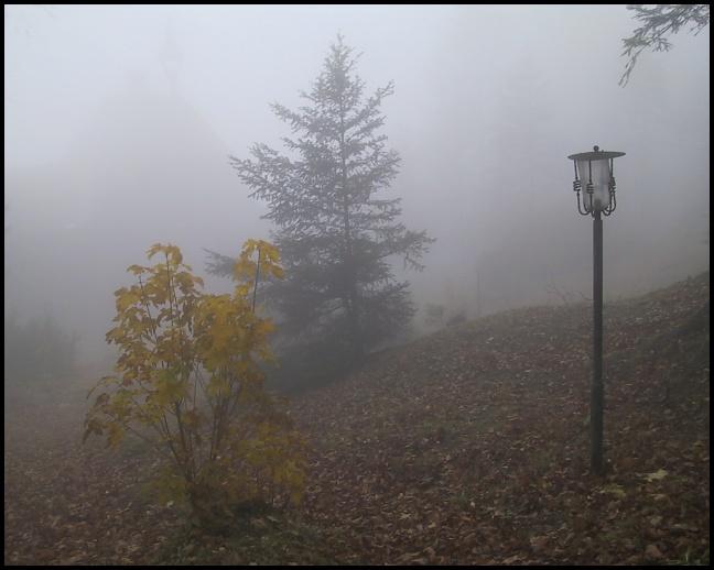 """фото """"Fog"""" метки: пейзаж, осень"""