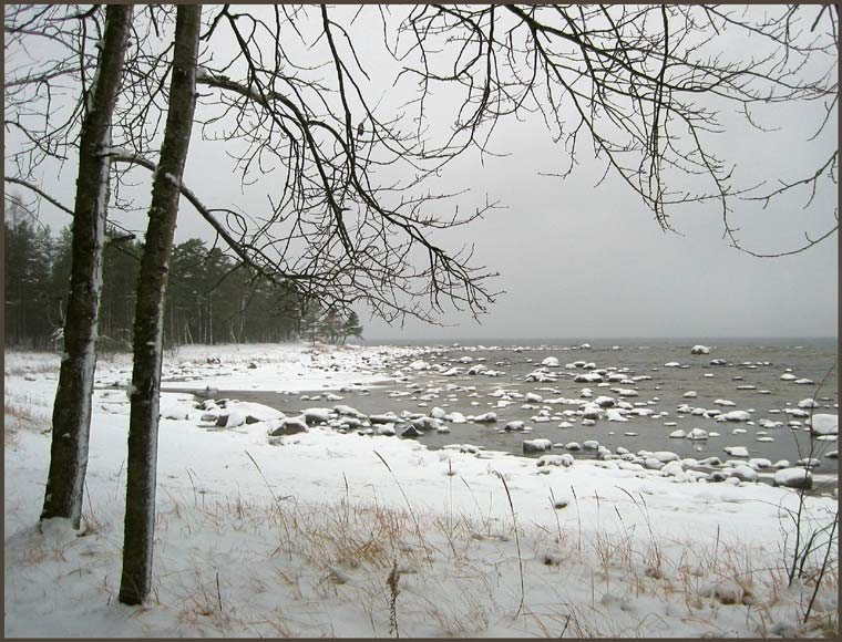 "photo ""Sketch of a sad Baltic season"" tags: landscape, autumn, water"