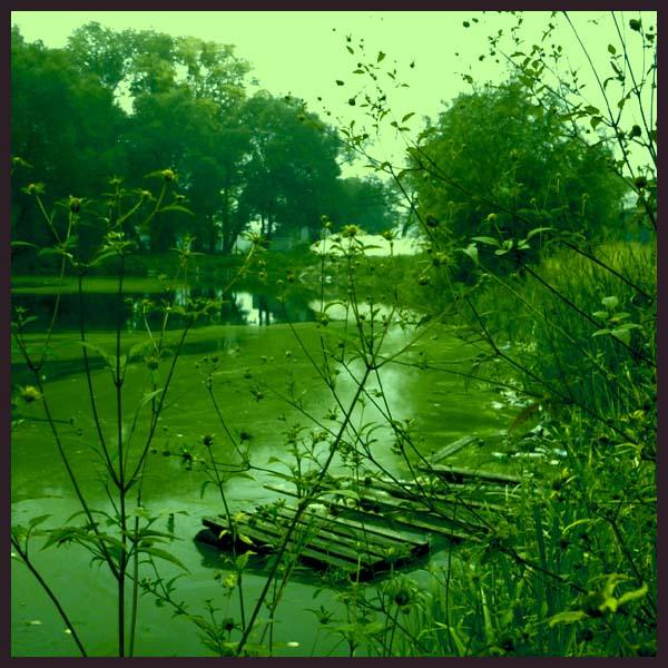 "фото ""final experiment"" метки: пейзаж, природа, вода"