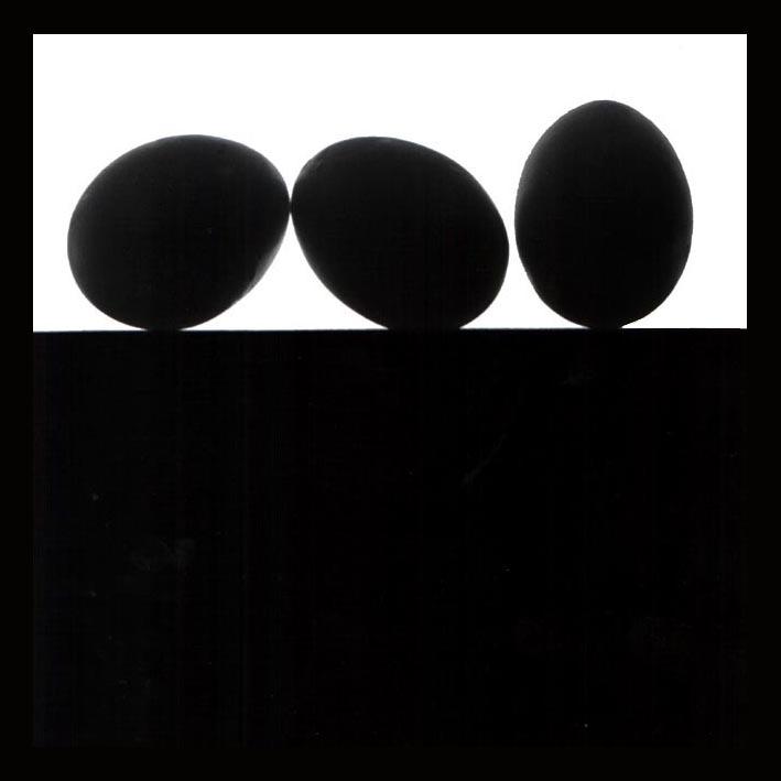 "photo ""Eggs"" tags: still life, black&white,"