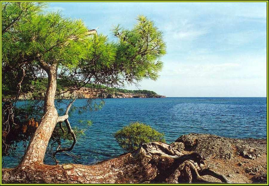 """фото """"Средиземное море"""" метки: пейзаж, вода"""