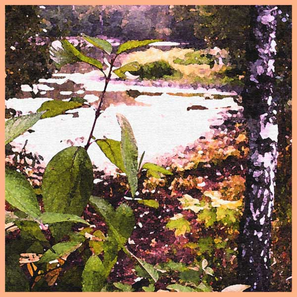 """photo """"the colors of summer"""" tags: montage, landscape, water"""