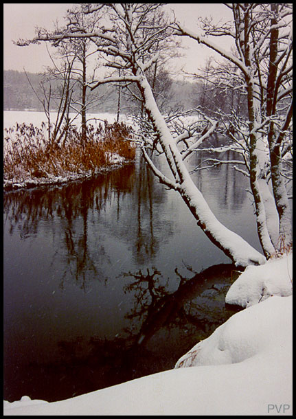 "photo ""Winter begin"" tags: landscape, water, winter"