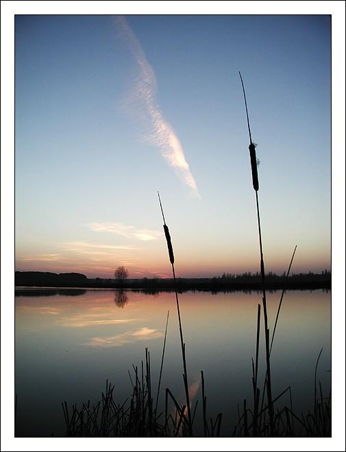"фото ""Камыш"" метки: пейзаж, вода, закат"