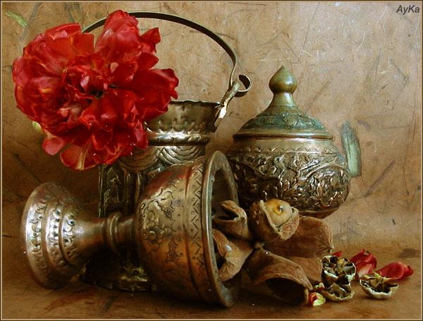 "photo ""My azerbaijanian roots..."" tags: nature,"