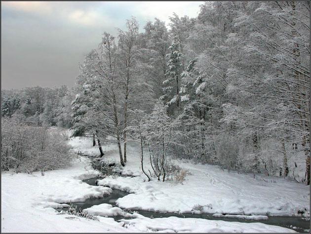 """фото """"Зимний ручей"""" метки: пейзаж, зима, лес"""