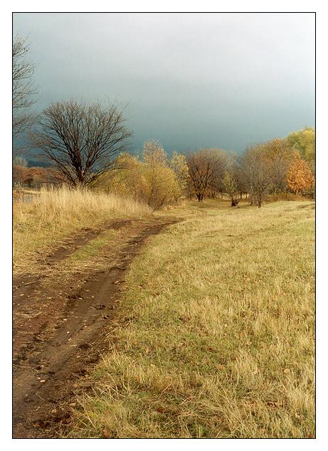 """photo """"Autumn sketches #9"""" tags: landscape, nature, autumn"""