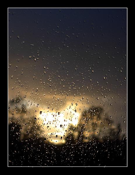 "photo ""raindrops....."" tags: misc.,"