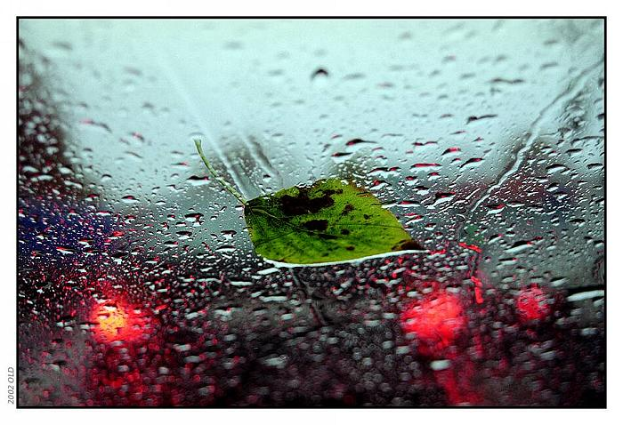 """фото """"за стеклом"""" метки: пейзаж, осень"""