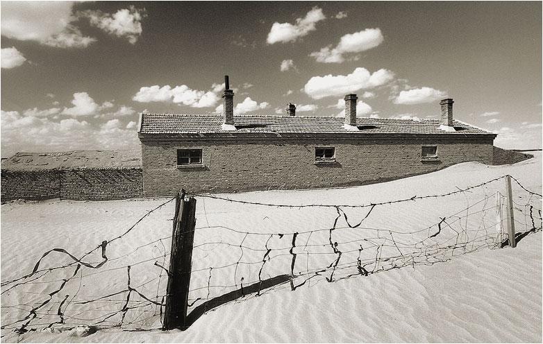 """фото """"Жизнь в песках #3"""" метки: пейзаж, путешествия, Азия"""