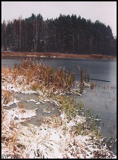 "фото ""Ноябрь"" метки: пейзаж, осень"