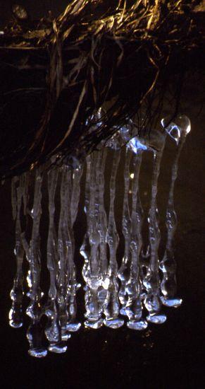 """фото """"Бижутерия от Водяного. Серьги."""" метки: природа, абстракция,"""