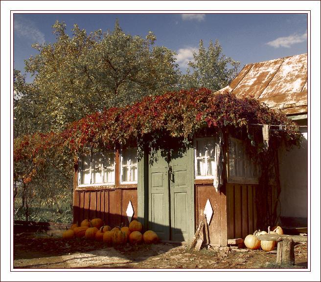 """photo """"Pumpkins"""" tags: landscape, travel, Europe, autumn"""