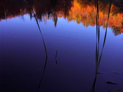"""фото """"Blues"""" метки: пейзаж, осень"""
