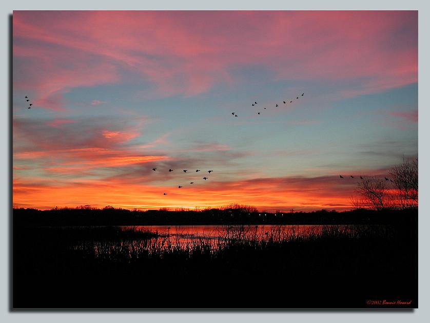 "фото ""Painted Skies"" метки: пейзаж, закат, зима"