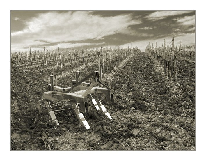 "фото ""The Plough"" метки: разное,"