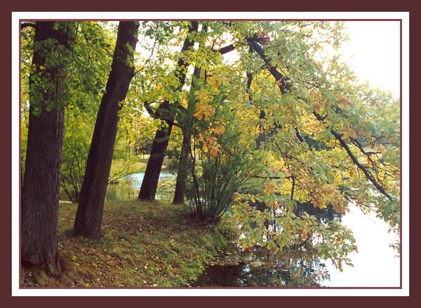 "photo ""Autumn in Pushkin"" tags: landscape, nature, autumn, flowers"