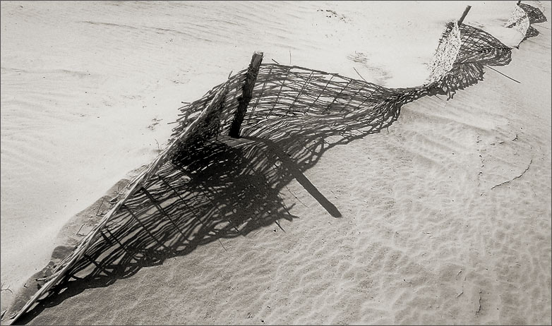 """фото """"Жизнь в песках #4"""" метки: пейзаж, путешествия,"""