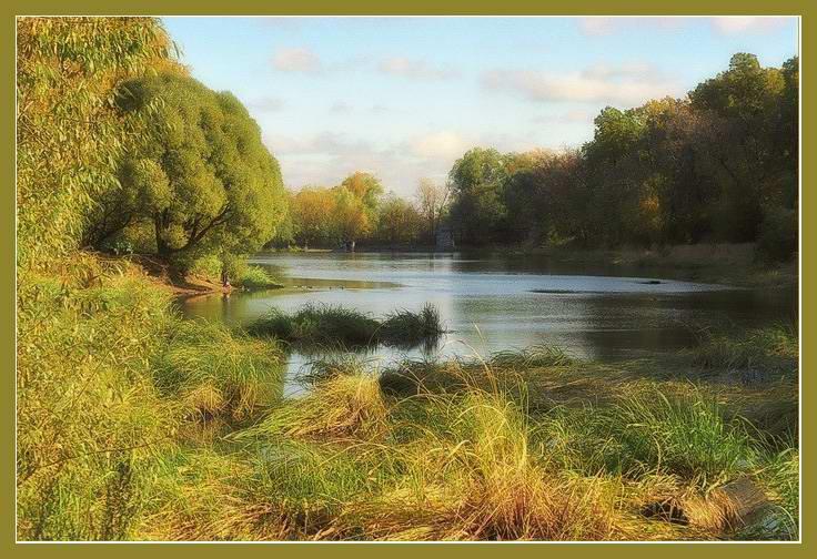 "фото ""Пруд в октябре"" метки: пейзаж, вода, лес"