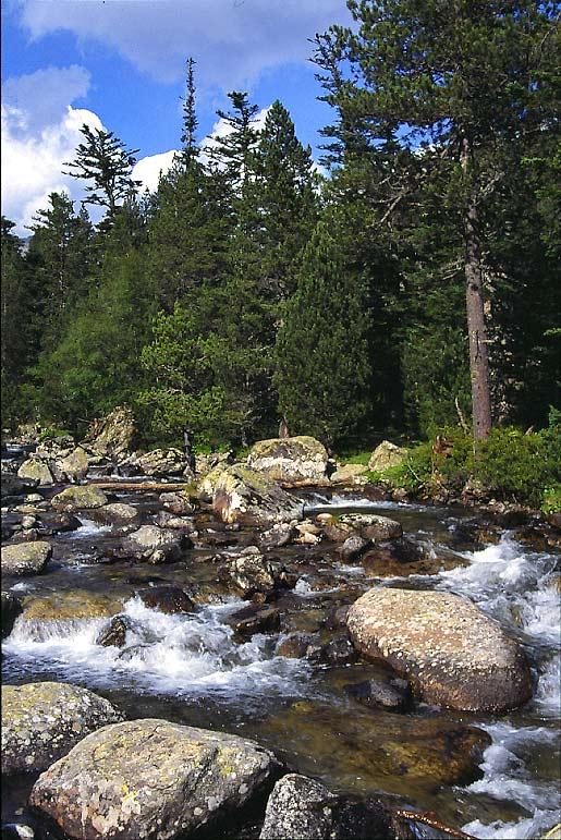 """фото """"River"""" метки: пейзаж, вода, горы"""