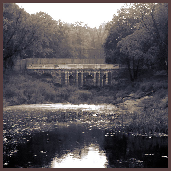 "фото ""an antique pond"" метки: пейзаж, вода, лето"