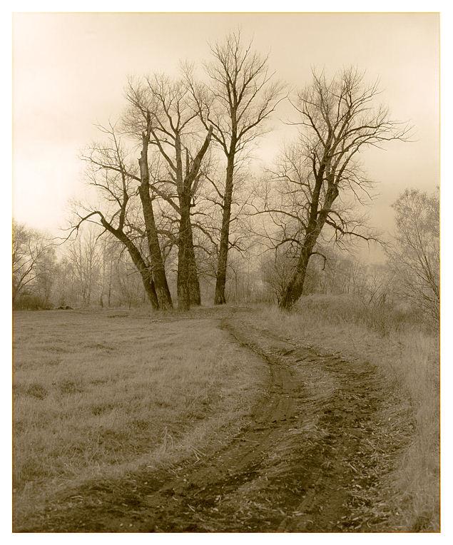 """photo """"Autumn sketches #12"""" tags: landscape, nature, autumn"""