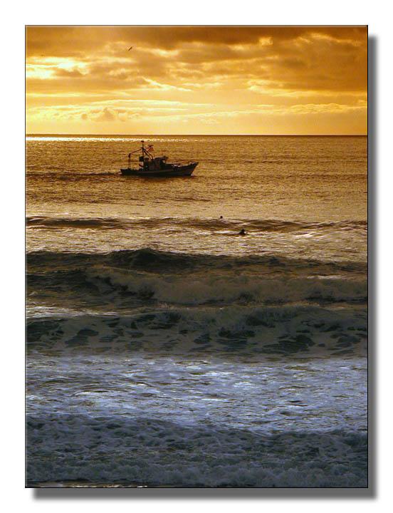 """фото """"Golden Sea"""" метки: разное,"""