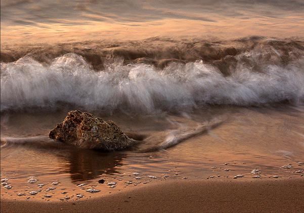 """фото """"By the shore..."""" метки: натюрморт,"""