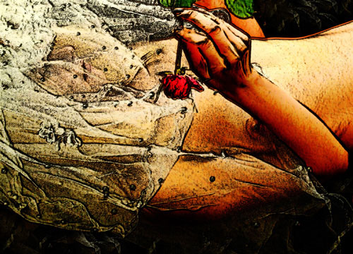 "фото ""The Last Rose"" метки: фотомонтаж,"