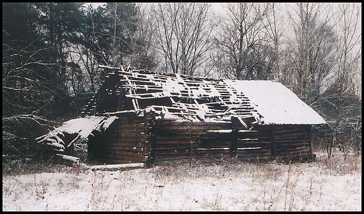 "фото ""Графика старости"" метки: пейзаж, зима"