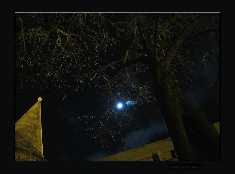 """photo """"moon light drive"""" tags: genre, architecture, landscape,"""