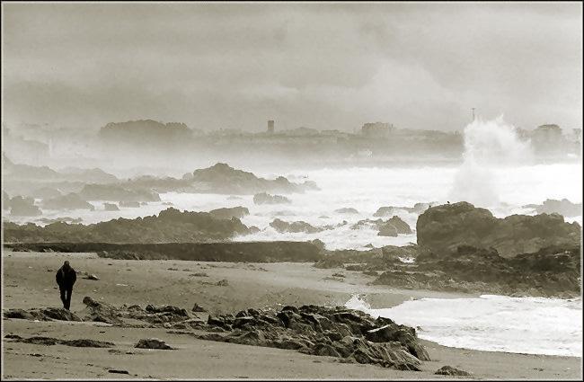 "фото ""Alone"" метки: пейзаж, путешествия, Европа, зима"
