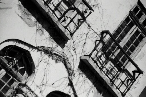 "фото ""old windows"" метки: архитектура, пейзаж,"