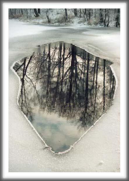 """фото """"зеркало"""" метки: пейзаж, зима"""