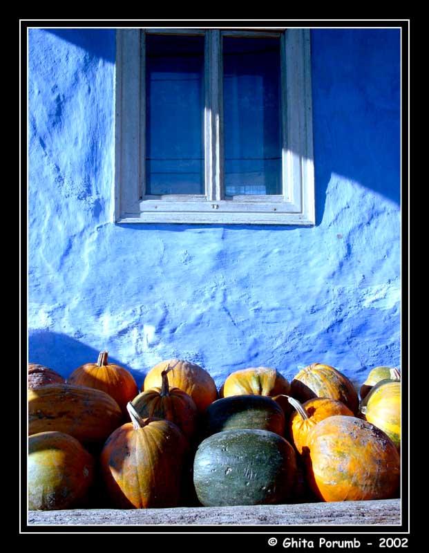 "фото ""Melons"" метки: разное,"