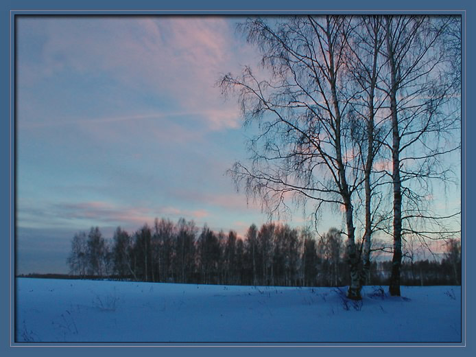 "photo ""Winter evening"" tags: nature,"