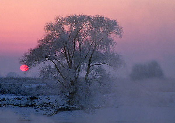 "photo ""Winter breath"" tags: landscape, winter"