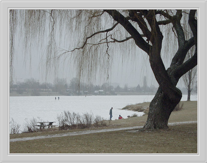 "photo ""Old Danube"" tags: travel, Europe"