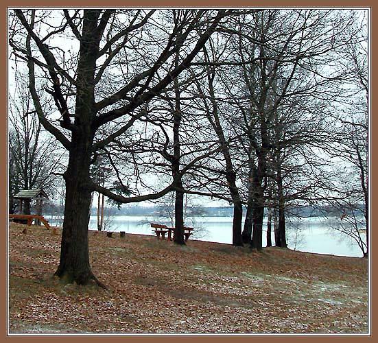"фото ""Поздняя осень"" метки: пейзаж, природа, осень"