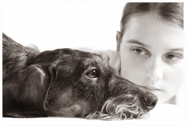 """фото """"Моя любимая собака..."""" метки: портрет, природа, домашние животные"""