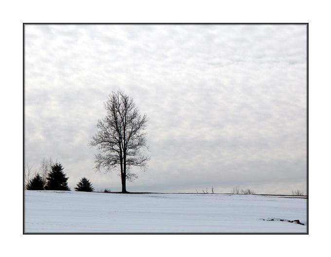 "фото ""A cloudy day"" метки: пейзаж, зима"